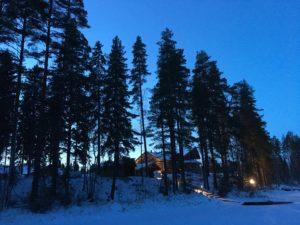 Korkeita kuusia talvimaisemassa - talvella tarjoamme runsaasti tyky-aktiviteettia Pirkanmaalla